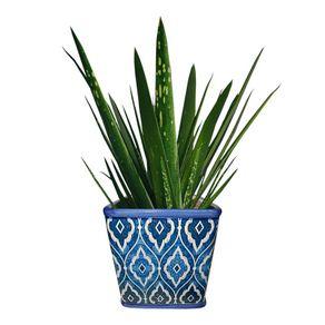 vaso-planta-azul-marroquino