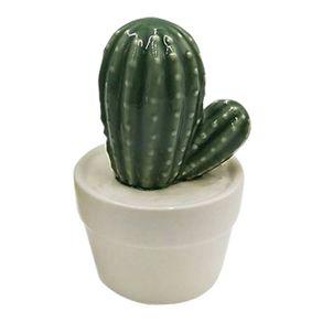 mini-vas-cactus-suculento