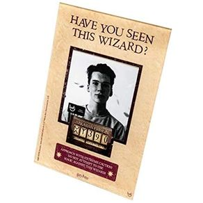 Porta-Retrato-Wanted-harry-Potter-1